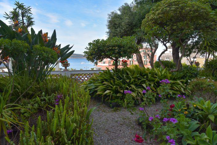 Il giardino del terrazzo